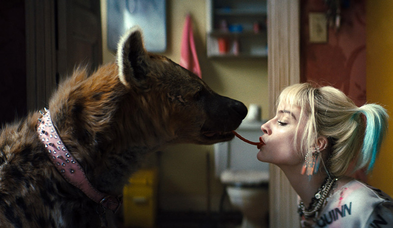 Harley and hyenas - name a better duo. | Image: Warner Bros. Pictures