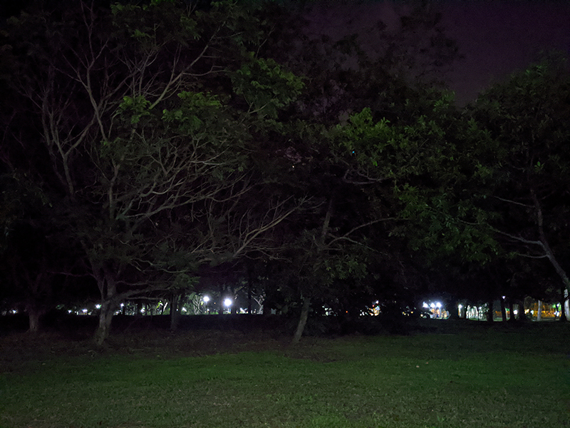 Pixel 4 XL Night Sight off. (Click to view full-size image)