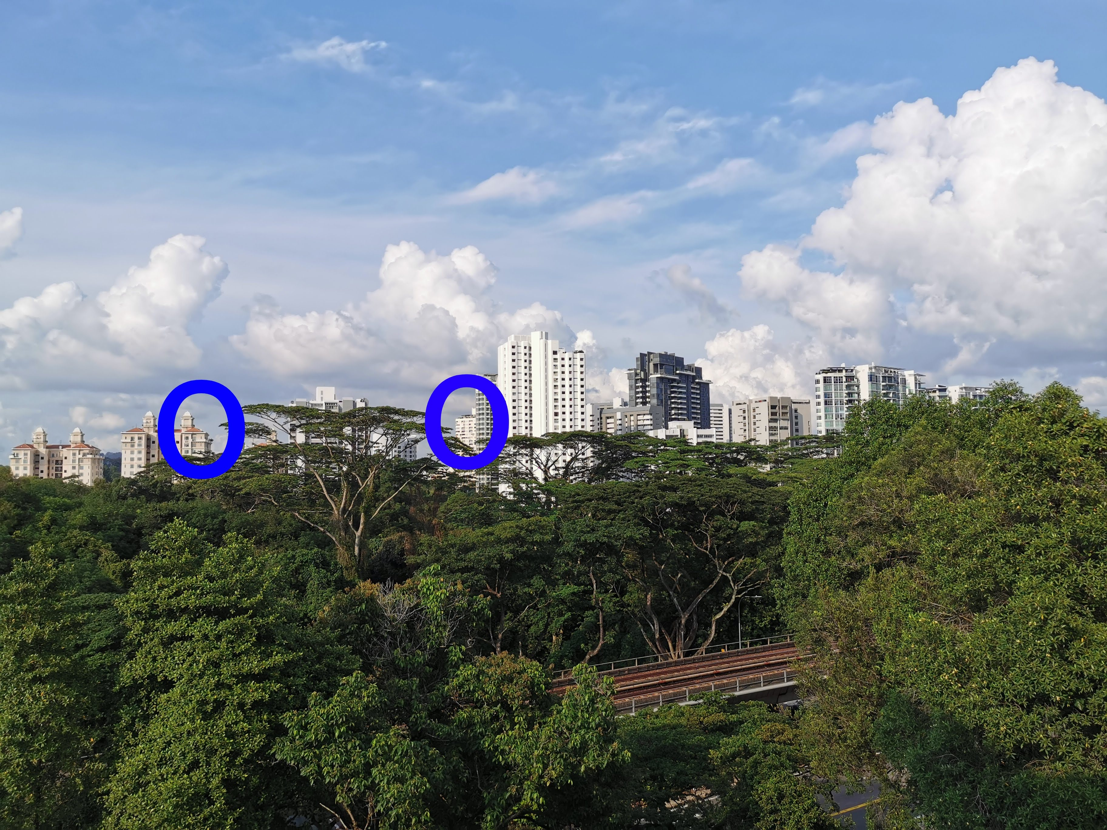 We're going to use this image as a guide for our zoom tests. Observe the two blue-circled areas. (This image was not shot with the Samsung devices.)