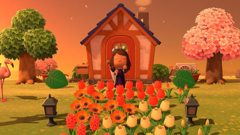It might take a while before you get your island to where you want it to be, but you can still have a lot of fun with it in the meantime. Plant flowers, try different clothes and dress up your house a bit. The only limit is your creativity - and how many Bells you're willing to spend.