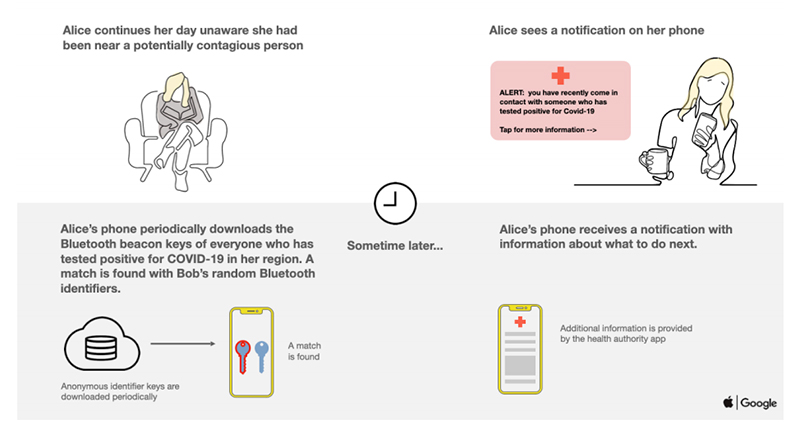 How the contact tracing API envisions to help health officials to track the spread of Covid-19, as told through the story of Alice and Bob (part 2). Source: Apple.