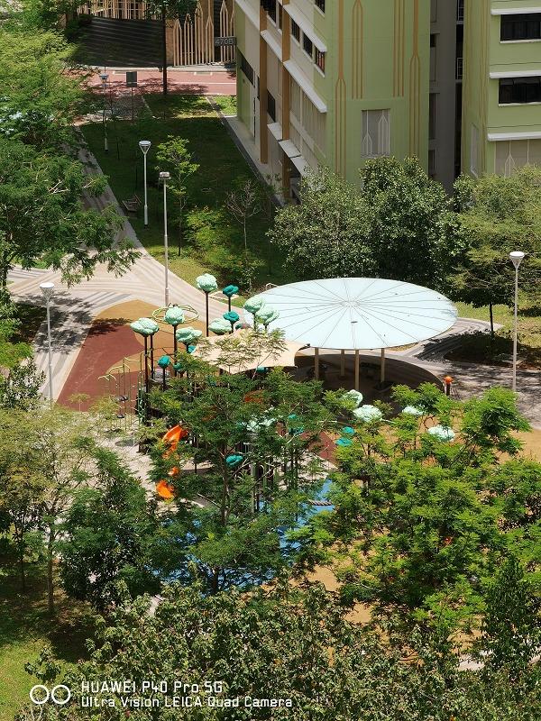 5x telephoto optical zoom shot. Click to view the original image.