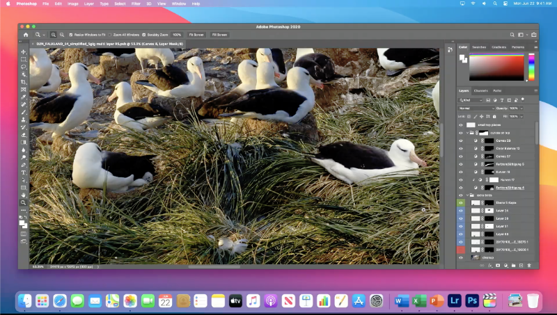 Apple showed off Adobe Photoshop running natively on its own processors.