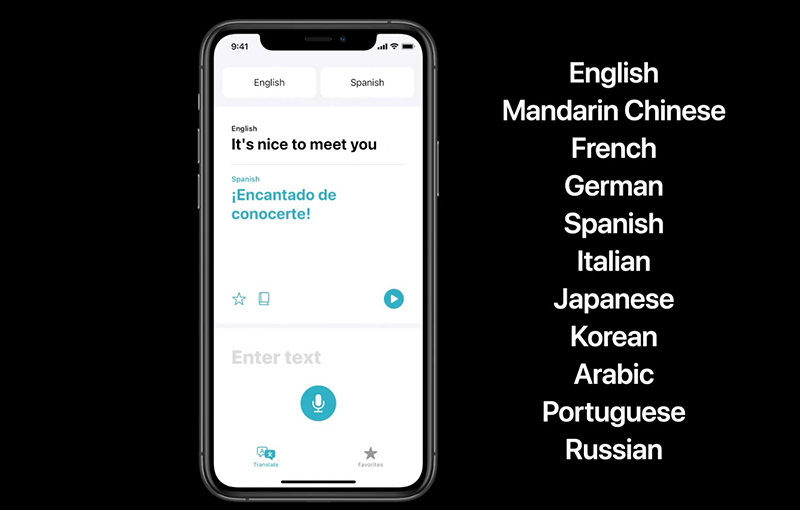 iOS 14 comes with built-in translation features, right from their Translate app.