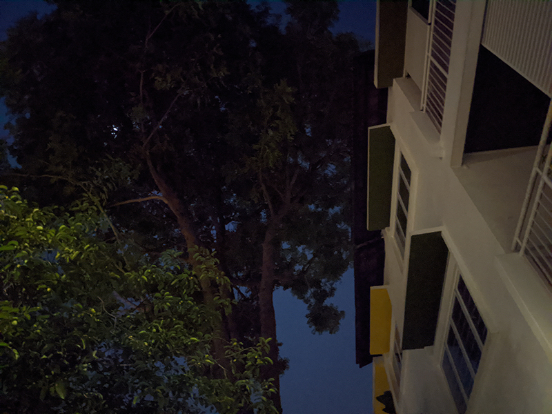 Pixel 4, Night Sight off.