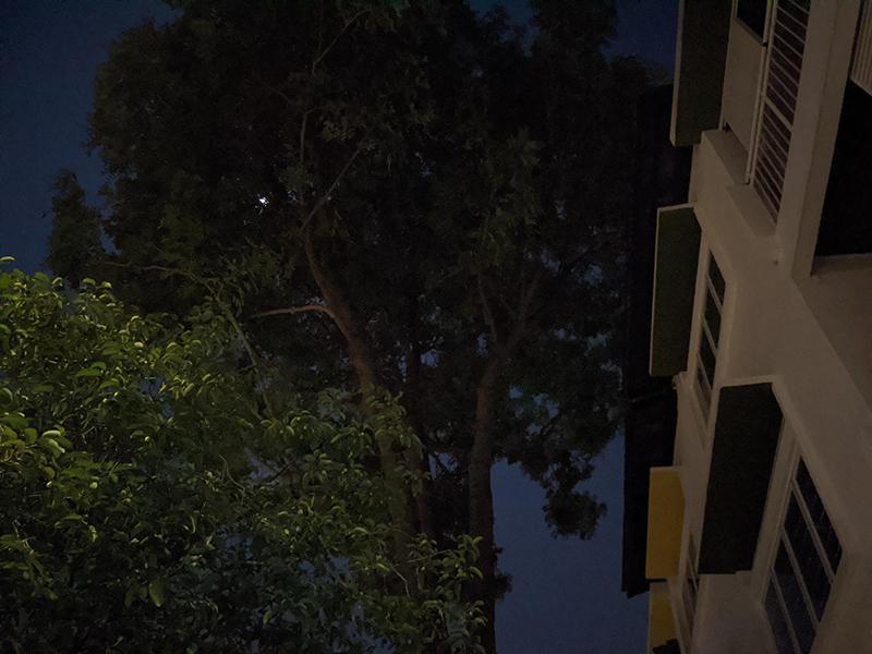 Pixel 4a, Night Sight off.