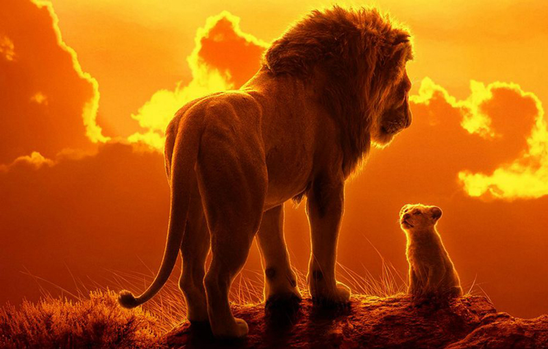 Disney is making a sequel to The Lion King with the director of Moonlight -  HardwareZone.com.sg