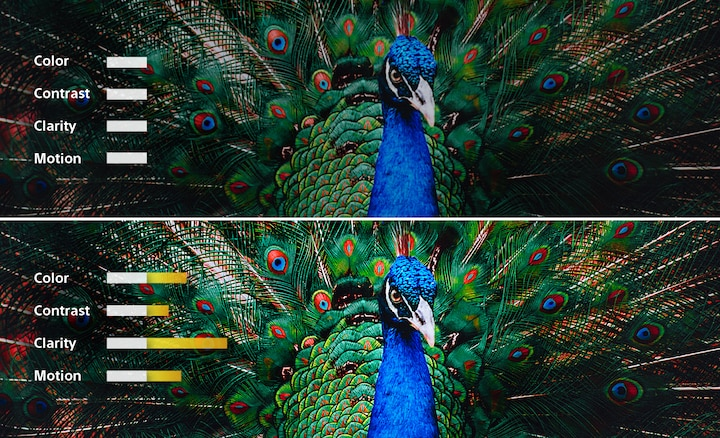 The new processor works on all aspects of an image together. Image courtesy of Sony.