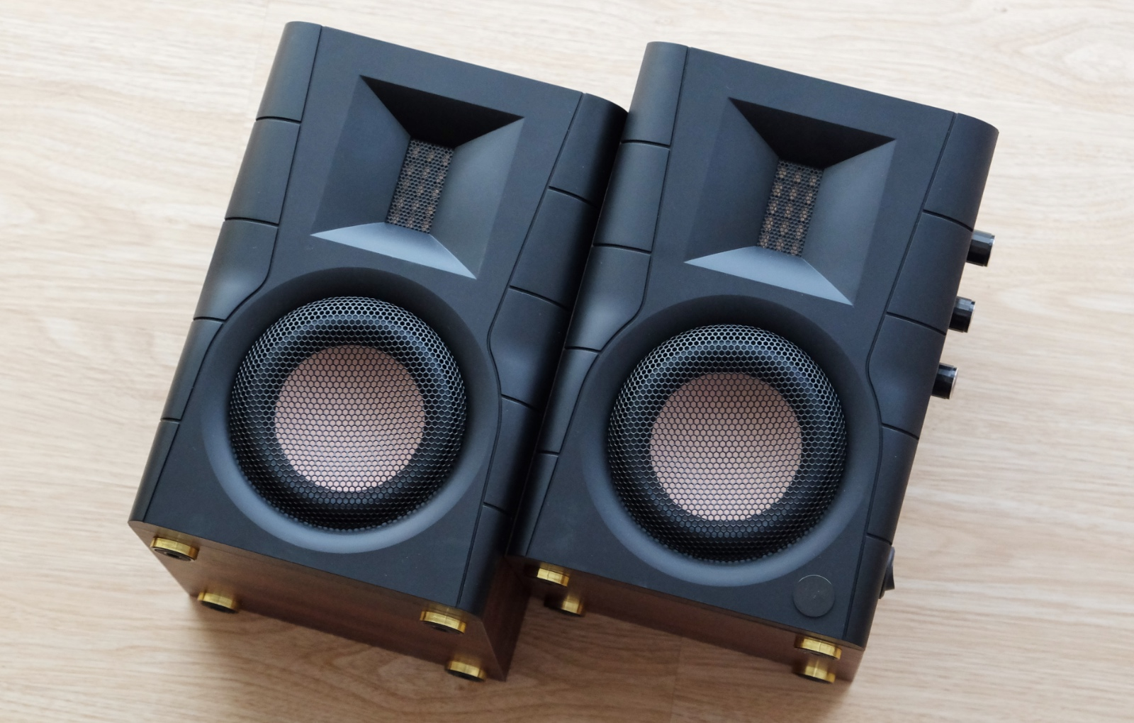 The D100 is one of Swans' most affordable speakers.