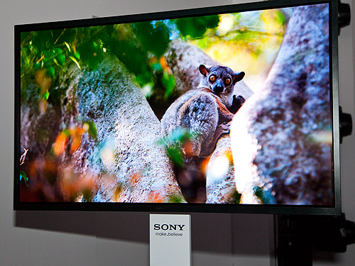 Sony demonstrated a working prototype of their latest 56-inch OLED 4K TV which was jointly developed with AU Optronics.