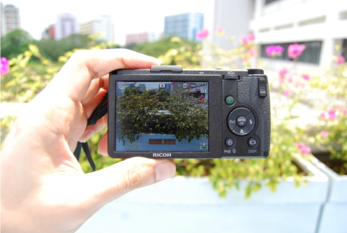 This picture was taken in the mid-day sun. With maximum brightness you can still see what's on the LCD screen.