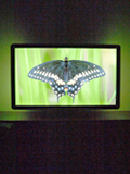 Philips 46PFL6605D LCD TV - Pretty as a Picture