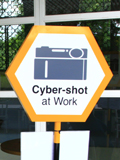 Work that Shot - The New Cyber-shot T-Series