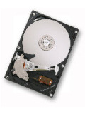 Hitachi Deskstar P7K500 Hard Drive (500GB)