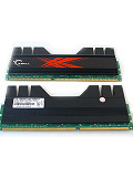 G.SKILL Trident PC3-12800 DDR3 Dual Channel Memory Kit (4GB)